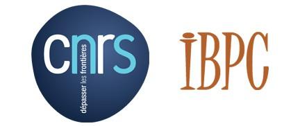 CNRS IBPC